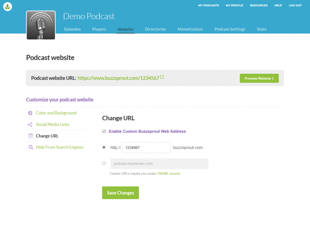 Buzzsprout podcast website domain